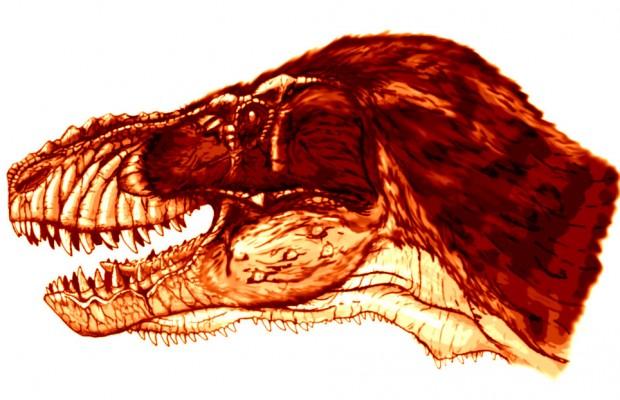 Sfondi dinosauri HD 15