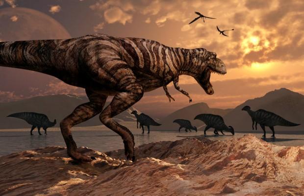 Sfondi dinosauri HD 16