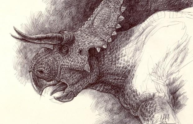Sfondi dinosauri HD 17