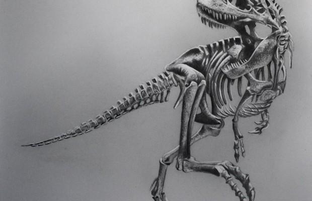 Sfondi dinosauri HD 29