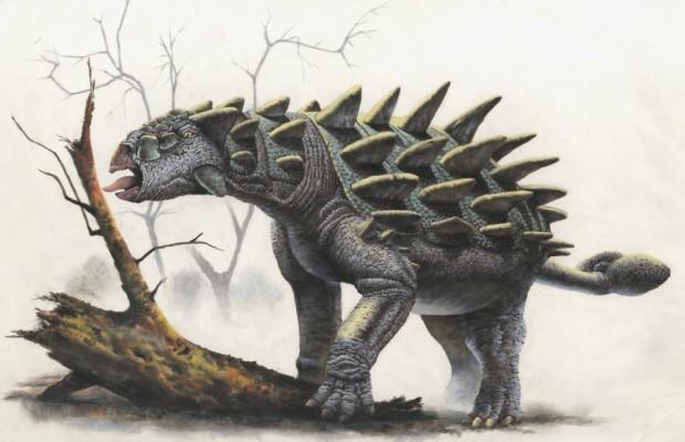 Sfondi dinosauri HD 5