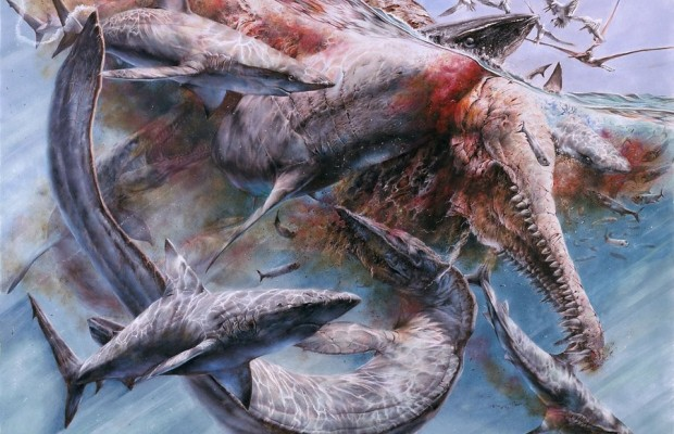 Sfondi dinosauri HD 9